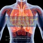 5 Gejala Dari Penyakit Paru Paru Basah