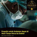 Propolis untuk Ambeien dapat di Atasi !