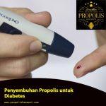 Propolis untuk Diabetes, Begini Penyembuhanya !