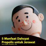 5 Manfaat Dahsyat Propolis untuk Jerawat