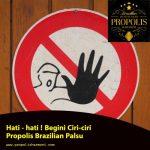 Hati – hati ! Begini Ciri-ciri Propolis Brazilian Palsu