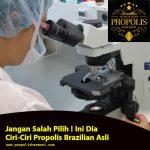 Propolis Brazilian Asli, Jangan Salah Pilih !