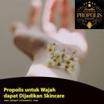 Propolis untuk Wajah dapat Dijadikan Skincare